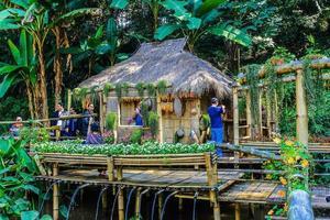Chiang Rai, Thailand 2017- Doi Tung Gardens photo