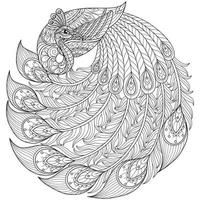 Peacock on white background. Hand drawn sketch for adult colouring book vector