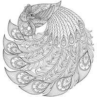 pavo real sobre fondo blanco. boceto dibujado a mano para libro de colorear para adultos vector