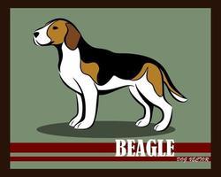 beagle color perro vector eps 10
