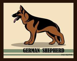 German Shepherd Dog color vector eps 10