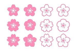 vector de flor de cerezo flores de cerezo rosa floreciendo aislado sobre fondo blanco