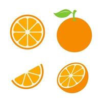 Summer refreshing fruit oranges are cut in half separately on white background. vector