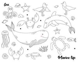Collection of marine life. Set of animals and birds vector