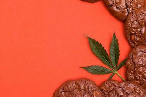 galletas con cannabis sobre un fondo naranja foto