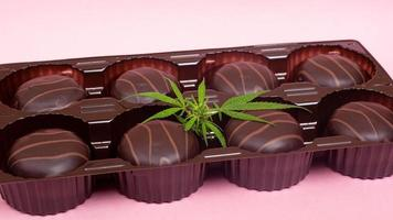 Chocolate cannabis cookies with THC and CBD extract photo