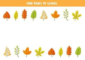 Find pair of each autumn leaf. Game for kids, vector