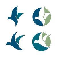 imagenes de aves vector