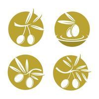 Olive logo images illustration vector