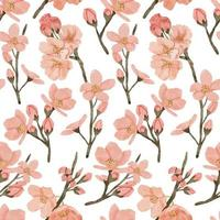 watercolor cherry blossom spring flower seamless pattern vector