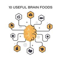 Top useful products for the brain vector