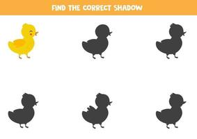 Find the right shadow of cute cartoon duckling. vector