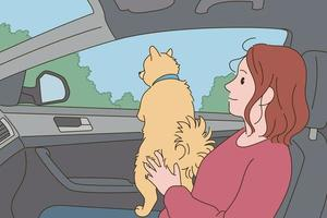 Dog and girl in a car ride vector