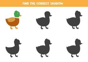 encuentra la sombra correcta del pato de dibujos animados lindo. vector