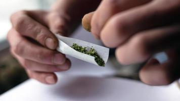 El hombre pone marihuana en papel de jamba foto