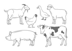 Farm Animals Illustrations Set vector