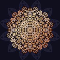 Luxury Mandala Design vector