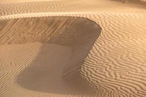 Beautiful sand dune in Thar desert, Jaisalmer, Rajasthan, India. photo