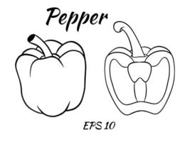 Fresh pepper vegetable isolated icon. pepper for farm market, vegetarian salad recipe design. vector