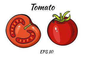 A set of juicy tomatoes. vector
