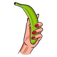 plátano verde colorido. un monton de bananas. vector