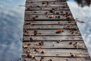 A wooden bridge is covered with autumn leaves. Autumn maple leaves on wooden table. Falling leaves natural background photo