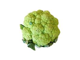 Head of broccoli isolated on a white background photo