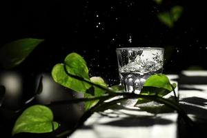 A glass of water on a dark background among the green leaves. Eco concept. Spilled water from a glass. Drops of water on a black background