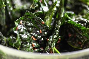 Black cabbage chips photo