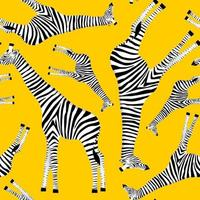 Yellow background with giraffes who want to be zebras vector