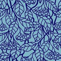 Fondo transparente azul con bayas azules en las ramas vector