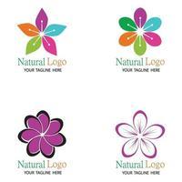 Beauty plumeria icon flowers design illustration Template set vector