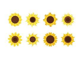 Sunflower icon design template vector