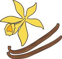 flor de vainilla y palos vector