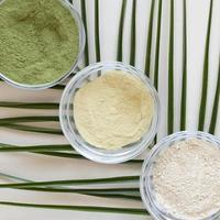 Nutritional powders in bowls on green plant background photo