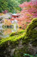 Beautiful Daigoji temple with colorful tree and leaf in autumn season photo