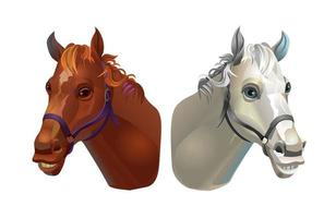 The heads of the horses. Light and dark. Vector illustration