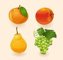 Fruit isolated on a light background.Orange, Peach, Pear, Grapes. Fruits set. Vector illustration