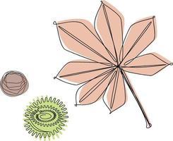 hojas de castaño y semillas pintadas de arte lineal vector