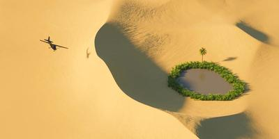 Black airplane over desert dunes with a small oasis, 3d rendering photo