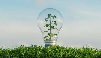 Bombilla de vidrio sobre un terreno lleno de vegetación en el interior, 3D rendering foto