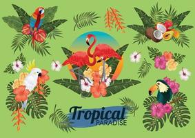 tropical paradise element set with birds and foliage vector