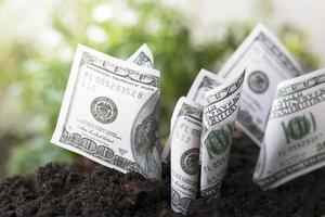 Money on soil
