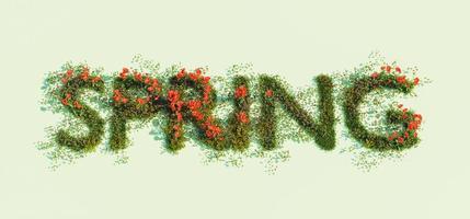 Firmar con la palabra primavera de flores de primavera sobre un fondo verde, 3D Render foto