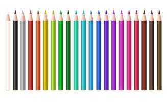 set of a real color wood pencil vector