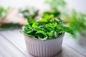 Fresh mint herbs in a white bowl photo