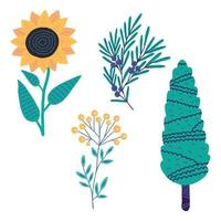Vector illustration. Cute plant. Cypress, juniper, sunflower, tansy isolated on white background.