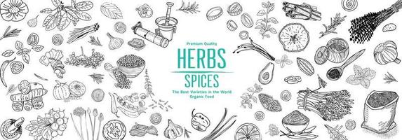 Herbs and Spices. Hand drawn vector illustration set. Top view frame. Engraved design. Spice and herbs black and white design. Card design.