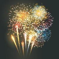 Multicolored fireworks exploding in the sky at night Vector Illustrator 10