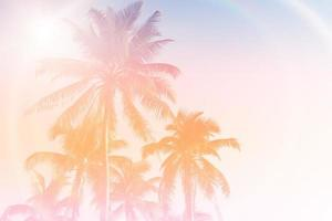 Tropical palm coconut trees on sunset sky flare and bokeh nature background photo